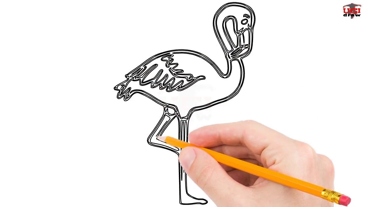 How To Draw A Flamingo Step By Step Easy For Beginners Kids Simple