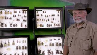 IncrediWorld Creature Features Day 1 with Buddy Davis