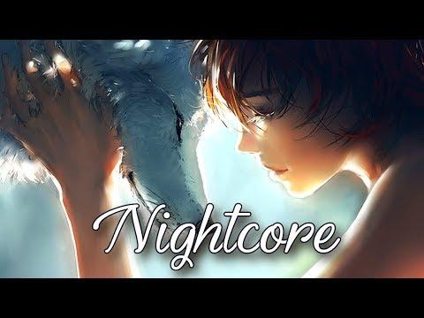 Nightcore  - Wild Ones