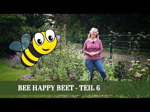 bee-happy---ein-beet-für-die-bienen---teil-6