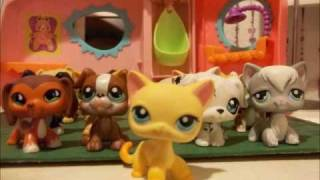 LPS The Paparazzi Runaway Part #1
