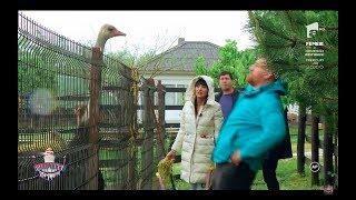 Catalin Morosanu, bataie printre gard cu un strut ,,Stai linistit, ca nu ma dau la femeia ...