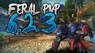 6.2.3 Feral Druid PvP - World of Warcraft Feral PvP