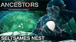 ANCESTORS SELTSAMES NEST Ancestors: The Humankind Odyssey Deutsch German Gameplay #26