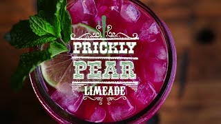 Prickly Pear Limeade | Thirsty For ...