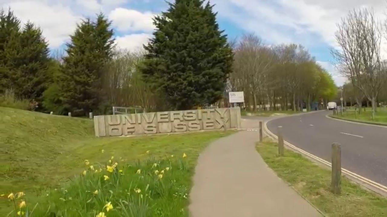University Of Sussex – Bridge