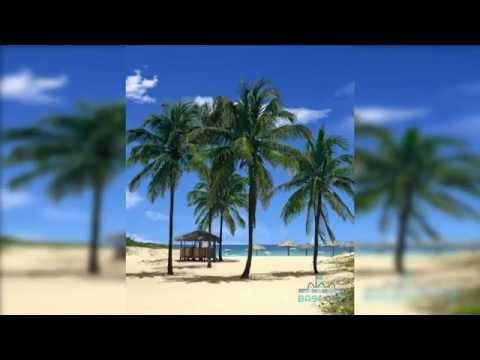 Samsung note 7 Beach Palms 3D Live Wallpaper