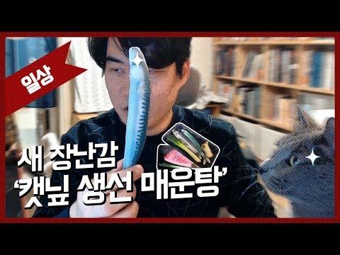 [자동] NEW 고양이 장난감 '캣닢 생선 매운탕' / 180312 IRL 하이라이트