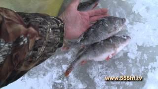 Зимняя рыбалка на Рыбинском водохранилище..