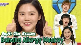 Banana allergy monkey