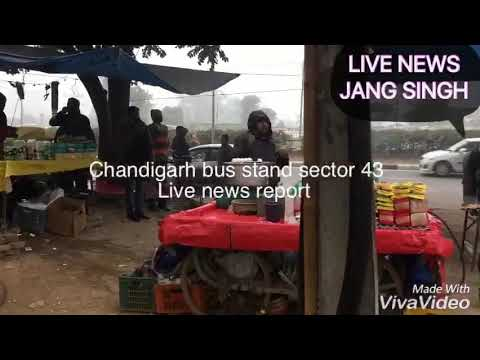 Food and safety law in Chandigarh