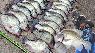 We Found A Monster Crappie GOLDMINE! Crappie Fishing 2019