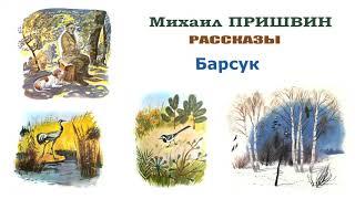 М.Пришвин AndquotБарсукandquot - Рассказы Пришвина - Слушать