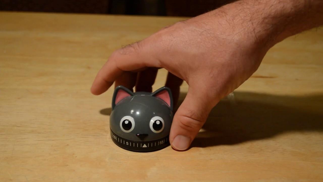 Kikkerland Kitty Cat Kitchen Timer Gadget Review