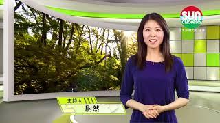 【健康是福】小球藻特輯(一)食物是最佳良藥