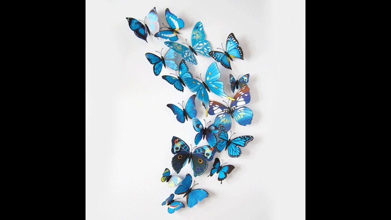Butterfly Decals For Walls   Butterfly Wall Decals   Butterfly Wall Stickers  Designs   YouTube