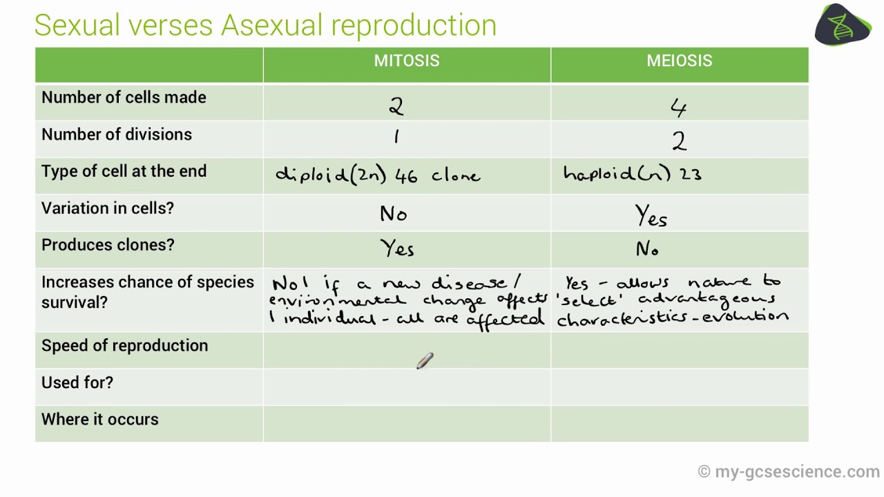 Asexual reproduction definition gcse maths