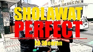 Aleehya - sholawat perfect (cover)