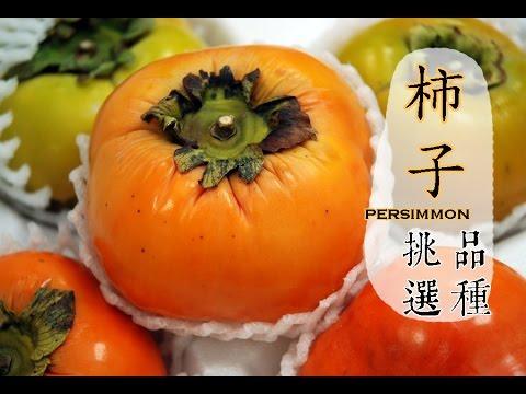 【秋】柿子紅了,挑選的撇步
