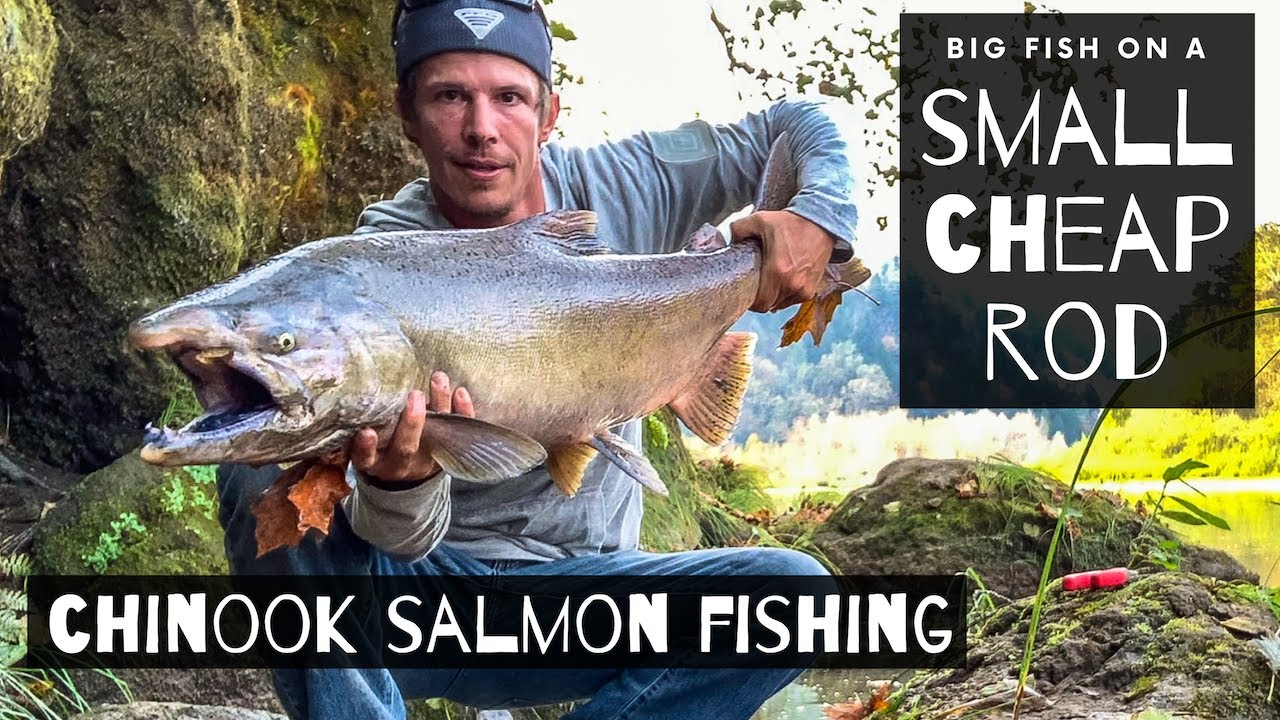 Fall Salmon Fishing With Twitching Jigs & Spinners | HUGE Chinook On A  Rod