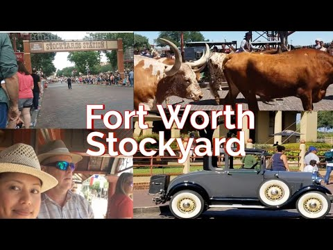 What's in Fort Worth's Stockyard? Let's find out the Adventure.
