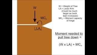 Engineering Principles of the Hinge