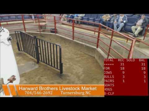 Harward Brothers Livestock Mkt 1/2/17