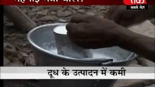 Milk price may go up: Pawar