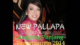 Download lagu Andai Lilin Herlina New Pallapa Live Ganggang Panjang 2014 dangdut koplo com MP3