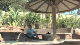 Backyard Spa, Swim-Up Bar & Waterfall