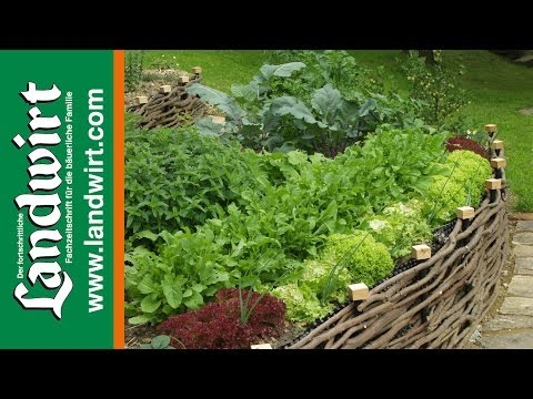 Garten pflegeleicht gestalten - YouTube