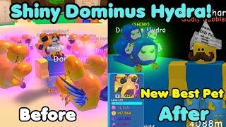 I Got Shiny Dominus Hydra Max Level! New Rarest Best Pet! - Bubble Gum Simulator