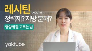 레시틴에 대한 모든것을 알려드립니다. 약튜브 원약사의 …