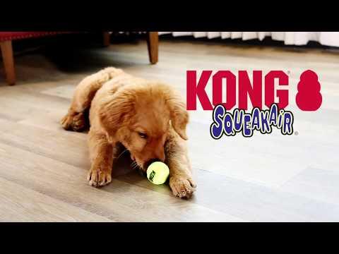 kong-squeakair---squeaky-tennis-ball-dog-toy