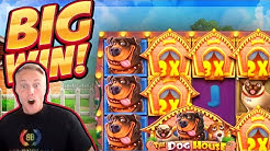 BIG WIN!!! Dog House BIG WIN!! Online Casino slot from CasinoDaddy Live Stream