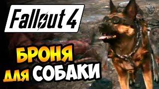 Fallout 4 Прохождение игры  БРОНЯ, КАСКА и ОШЕЙНИК для СОБАКИ 60 fps