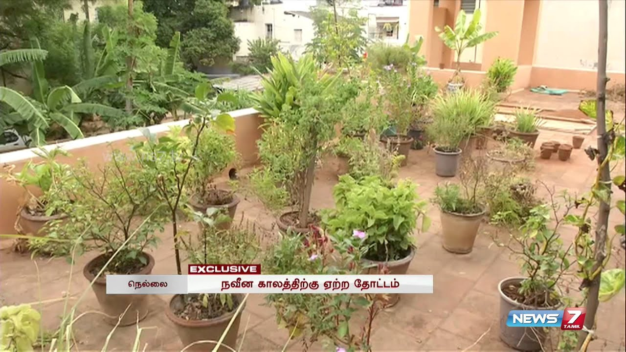 Increasing Natural Terrace Gardens In Tirunelveli Tamil