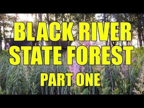 Black River State Forest - Part 1