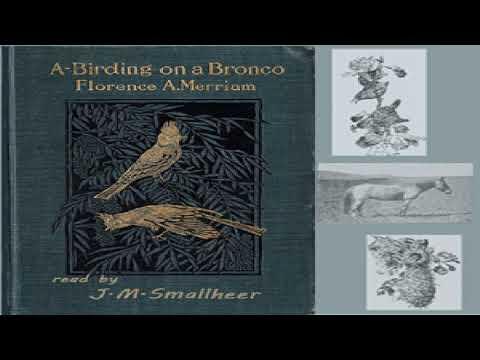 A-Birding on a Bronco | Florence A  Merriam | *Non-fiction, Nature |  English | 1/3