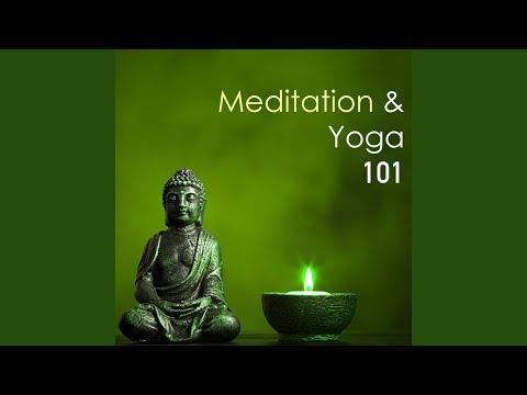 Popular Videos - Yoga Meditation 101
