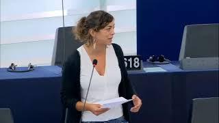 12-8-2018-Estrasburgo-El futuro de la movilidad-Informe
