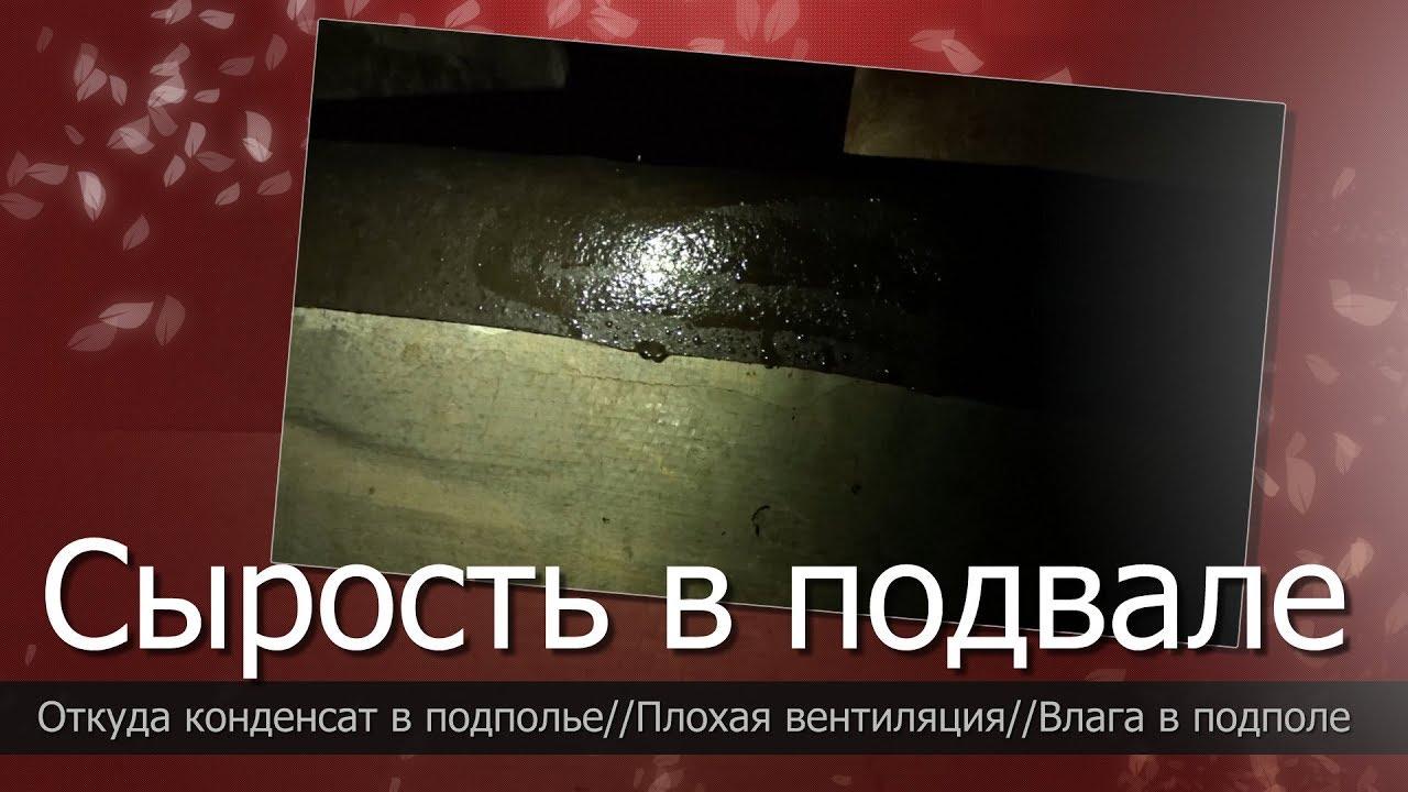 Появилась сырость в подвале//Откуда конденсат в подполье//Плохая вентиляция подполья?