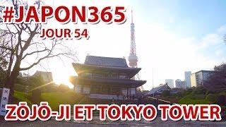 Temple Zojo-ji et Tokyo Tower (vlog Japon #54)