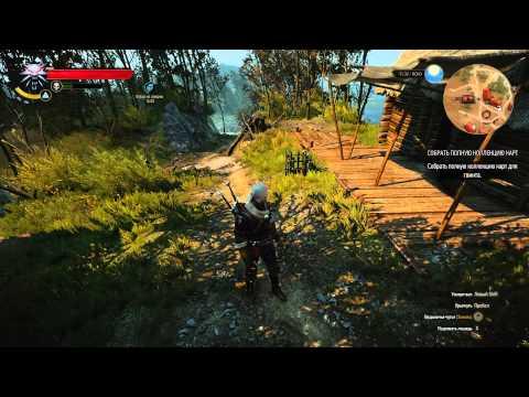 The Witcher  Swordsmanship Build Guide