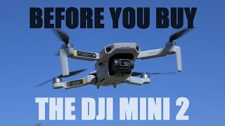 Before You Buy The DJI Mini 2 - What To Know Review | DansTube.TV