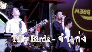 Tilly Brids  - จำเก่ง [4k]