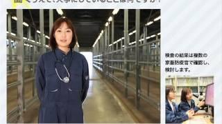 日本大学生物資源科学部 卒業生紹介 (獣医学科)