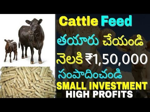 How to Start Cattle feed manufacturing business and earn | cattle feed making machine | in telugu