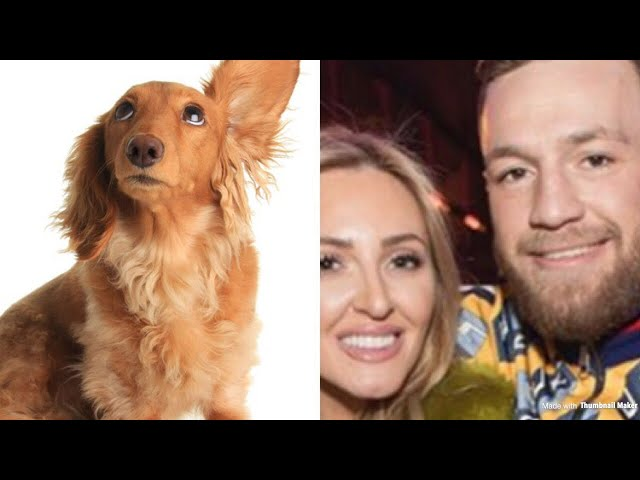 Conor McGregor's Sister Voicemail war with Groomers