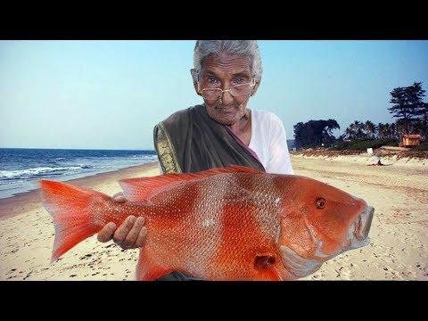 Sea Fish Recipe | Big Fish Recipe By Granny Mastanamma